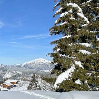 À seulement quelques kilomètres de #chamonix, nous trouvons le Grand Massif avec sa magnifique neige! ❄️☃️❄️ #grandmassif #hautesavoiexperience #skitouring #grandhoteldesalpeschamonix